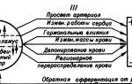 Артериальное давление медицинская энциклопедия