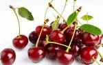 Влияние вишни на артериальное давление